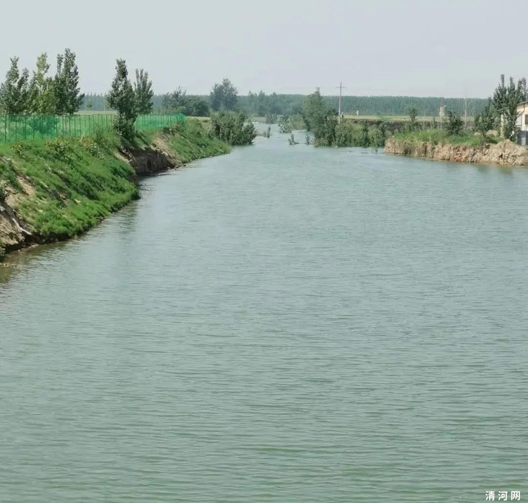 清河县这条干涸多年的河渠来水了!