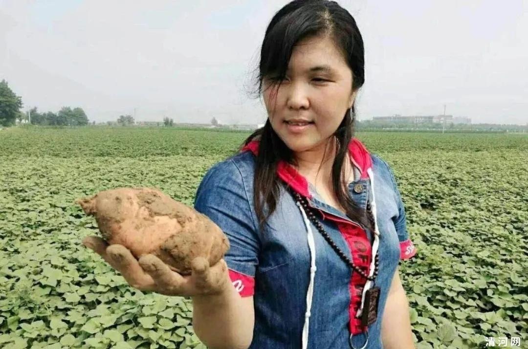 【邢襄好网民·脱贫故事】电商扶贫,让农特产品成网红