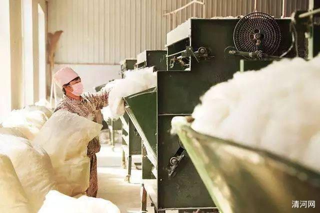 羊绒加工生产