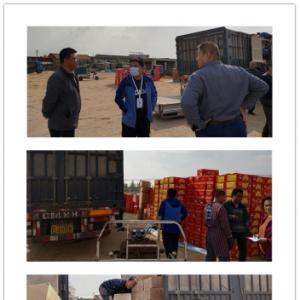 清河县政府出资回收各烟花爆竹零售门店存放的烟花爆竹,予以安全处理!